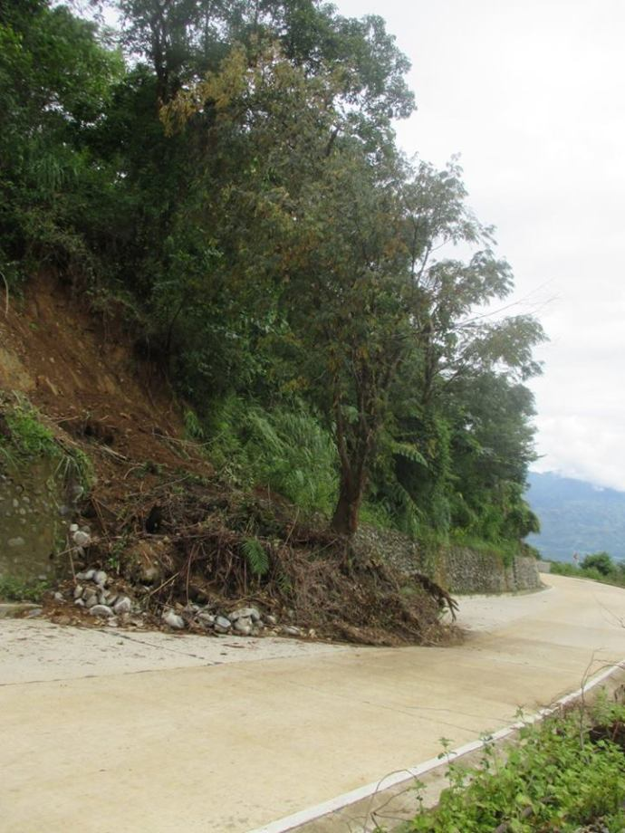 Moving some trees from our garden down to the road layog country farm typhoon ineng